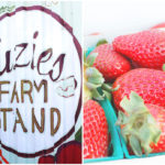 Suzies Farm in San Diego