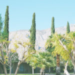 Chasing the sun in Palm Springs